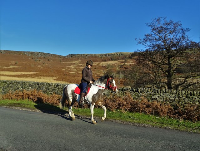 Morning horse ride near Stanage Edge