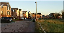 SK5802 : Houses on Maris Lane at St Mary's Park, Leicester by Mat Fascione