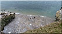 SH7783 : Beach at Great Orme's Head by Mat Fascione