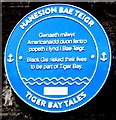 ST1875 : Tiger Bay Tales blue plaque, Bute Street, Cardiff by Jaggery