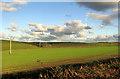 SS4927 : Winter crop near Horwood by Derek Harper