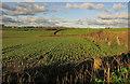 SS4827 : Farmland near Bradavin by Derek Harper