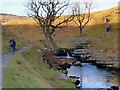 SD6975 : River Twiss, Ravenray Bridge by David Dixon