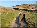 SD6975 : Moorland Track on the Ingleton Waterfalls Trail by David Dixon