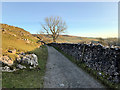 SD7075 : Twisleton Lane near Scar End by David Dixon