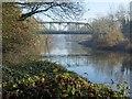 SJ6504 : Bridge over the River Severn by Philip Halling