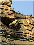 SS9168 : Loose rock by Alan Hughes