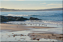 SW5842 : Gwinear-Gwithian : Godrevy Cove by Lewis Clarke