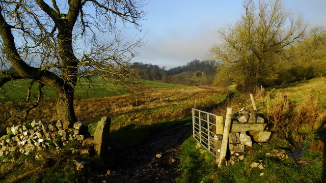 Path leading north towards Beresford Dale
