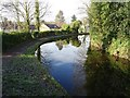 SO8171 : Staffordshire and Worcestershire Canal by Philip Halling