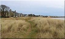NT4899 : Footpath on beach, Elie and Earlsferry by Bill Kasman