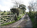 NY3038 : The track to Long Lea by David Purchase