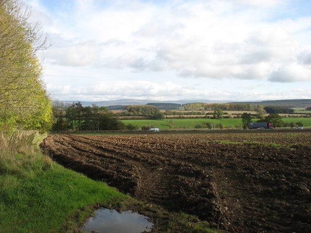 Fields east of Calthwaite