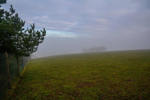 Newton St Cyres : Grassy Field