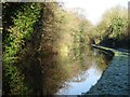 SO8172 : Staffordshire and Worcestershire Canal by Philip Halling