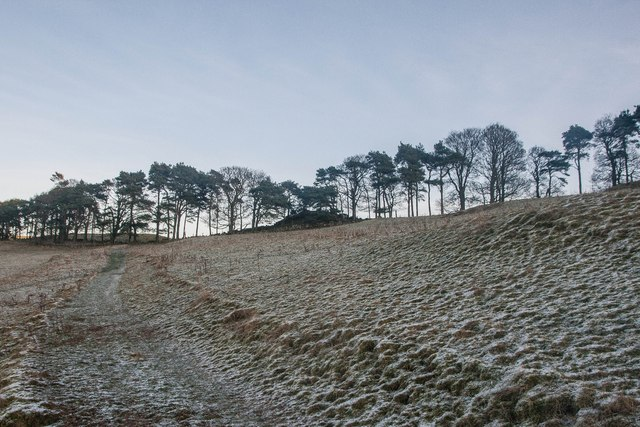 Winter on Silver Hill