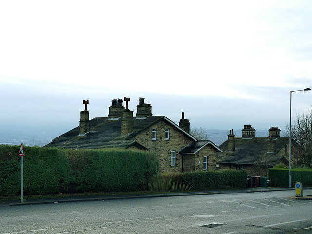 Houses on Valley View Grove