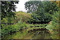 SJ8947 : Caldon Canal east of Northwood in Stoke-on-Trent by Roger  Kidd
