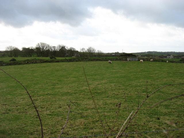 Farmland south of the A55