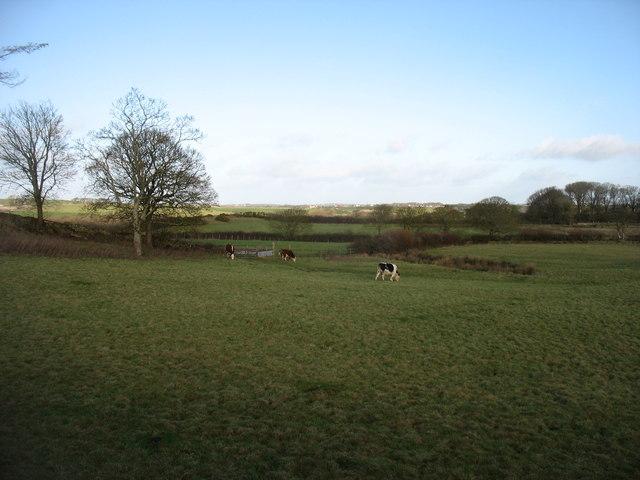 Farmland near Gwalchmai