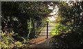 ST7367 : Cemetery gate, Lansdown by Derek Harper