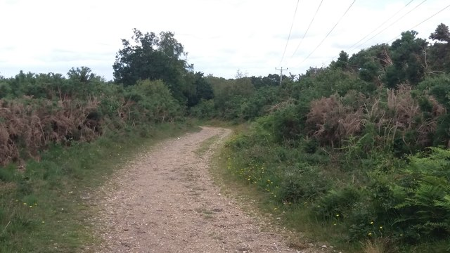 Path on Yateley Common