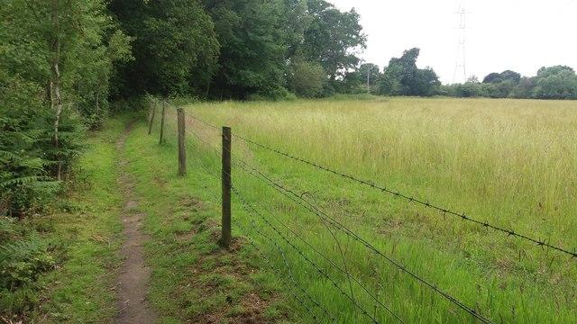 Path heading to Church Farm