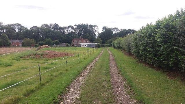 Path nearing Steventon