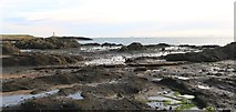 NT4999 : Remains of Apple Rock Pier, Elie by Bill Kasman