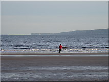 TA1280 : Beach at low tide, Filey by JThomas