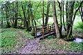 SO2684 : Offa's Dyke Path near Mardu by Jeff Buck