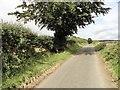 NZ0854 : Lane NW of Hill Top by Robert Graham