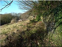 SE1323 : Brighouse Footpath 64 (east branch) by Humphrey Bolton