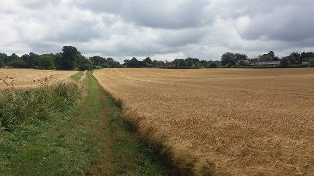 Path nearing Dummer