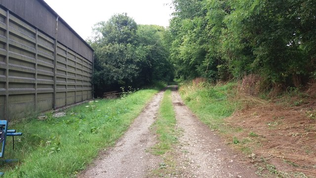Bridleway heading to Nutley Lane