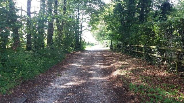 Nutley Lane