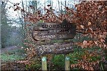NT5042 : Sign at Big Wood by Jim Barton