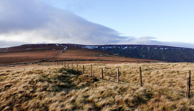 Fence near to Swinhope Head