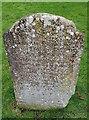 ST9387 : Tyger victim by Rob Farrow