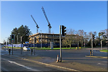 TL4661 : Cambridge Science Park cranes by John Sutton