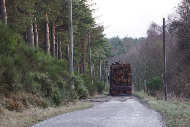Timber lorry in Tornagrain Wood