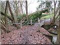 TQ3840 : Footbridge over Eden Brook, near Dormans Park by Malc McDonald