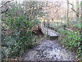 TQ3941 : Bridge across Eden Brook, near Dormans Park by Malc McDonald