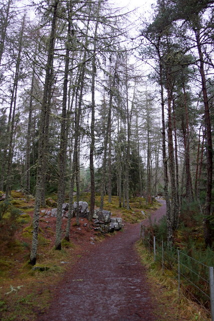 Path to the Falls of Bruar