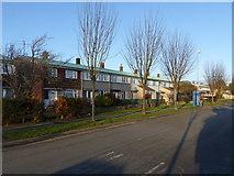TL4661 : Campkin Road, Cambridge by Alan Murray-Rust