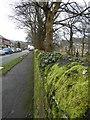 SJ9593 : School Lane by Gerald England