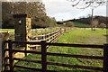 SE3559 : Entrance drive to Gibbet Farm by Derek Harper