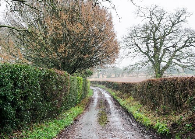 Minor road passing Pyebirch Manor