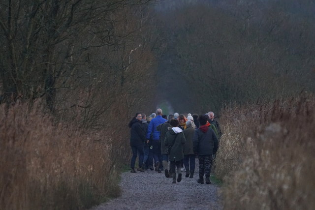 People on the causeway at Leighton Moss