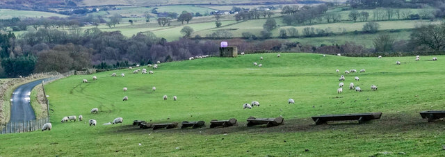 Pill box in field with sheep